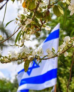 Israel-mijn-glorie